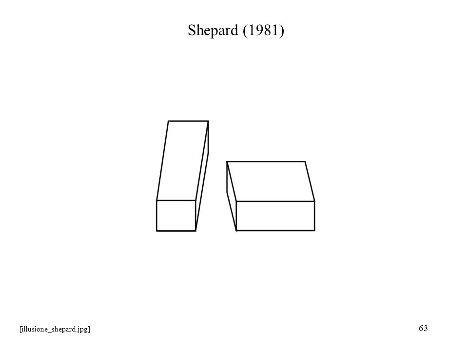 Shepard (1981) [illusione_shepard.jpg]